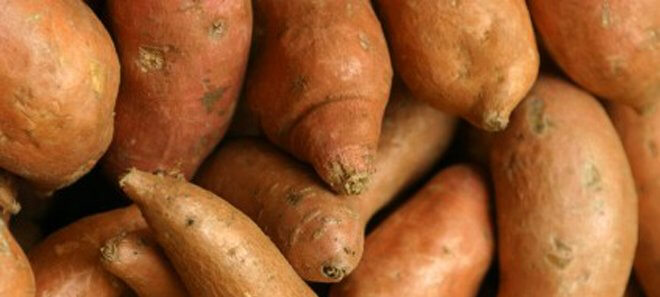 Close-up of Sweet Potatoes - main
