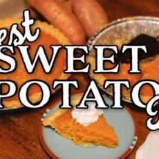 Sweet Potato Pie – This Farm Wife Cooks